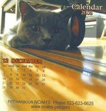 NOAH'Sカレンダー写真