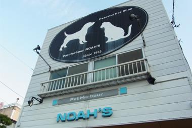noah's店舗写真
